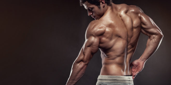 sdfsdfgre - Muskelvækst - Hvor meget protein skal man indtage?