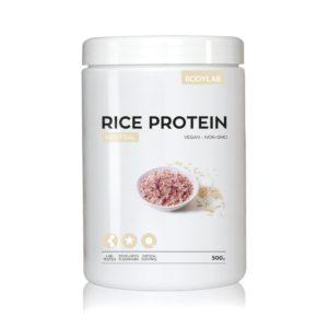ris protein bodylab